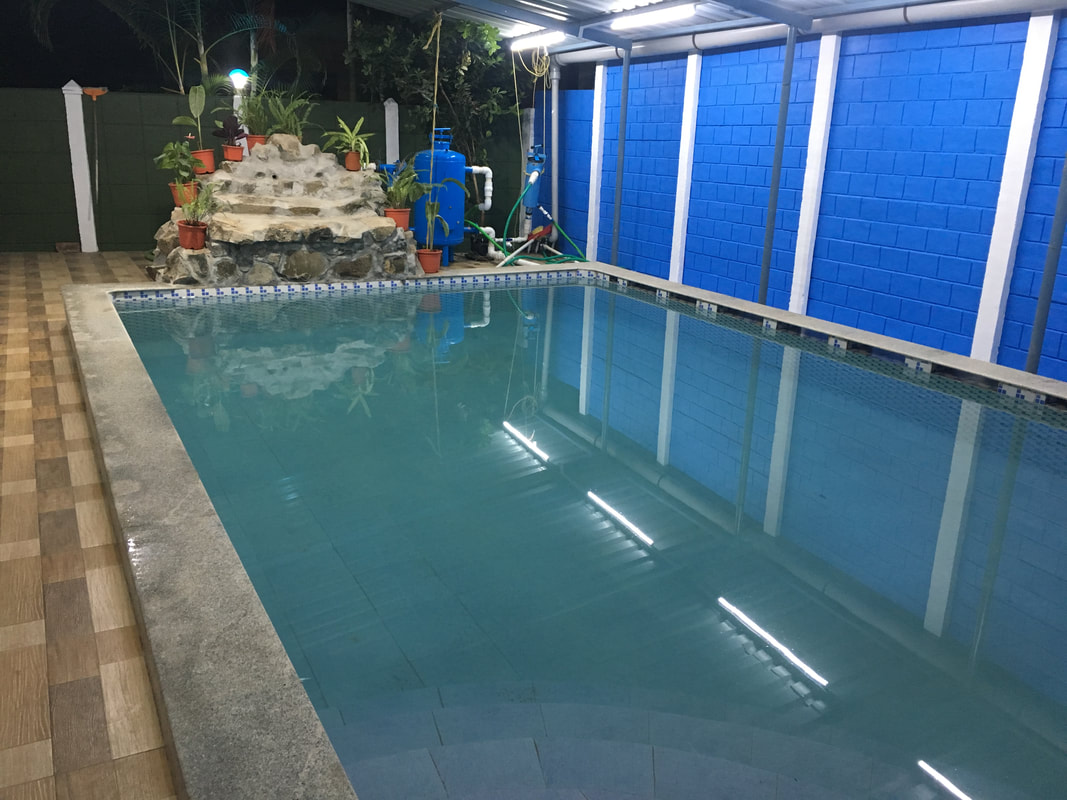 Dolphin House Swimming pool
